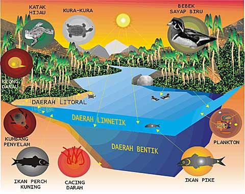 Ekosistem Perairan Akuatik Science Booth
